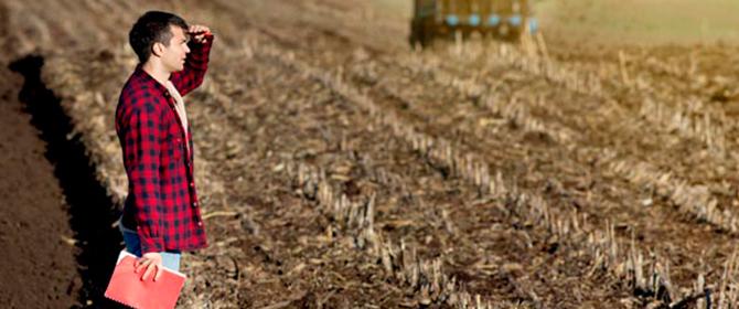 Agronomia: salários e oportunidades para engenheiros agrônomos