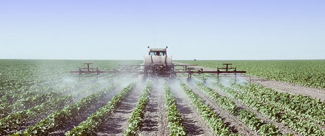 Engenheiros agrônomos passam a ser responsáveis pelo receituário de agrotóxicos