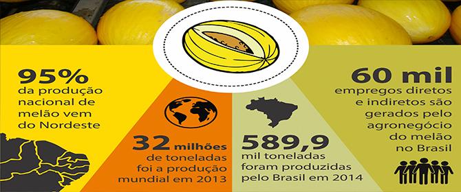 Melão brasileiro tem pegada de carbono 50% menor que o produzido no exterior