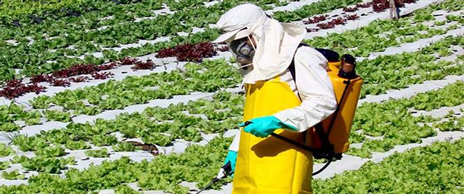 Profissionais de Agronomia de Mossoró discutem agrotóxicos